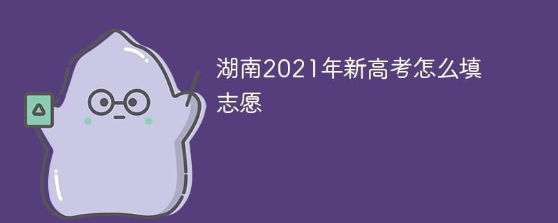 湖南2021年新高考怎么填志愿