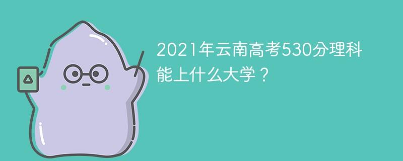2021年云南高考530分理科能上什么大学?